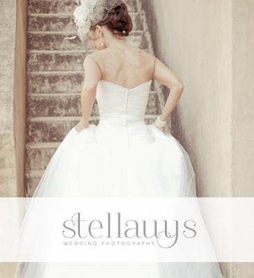 stellauys
